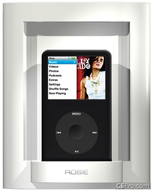 Savant iPod Dock