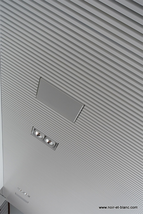 integrated in-ceiling speaker noir-et-blanc